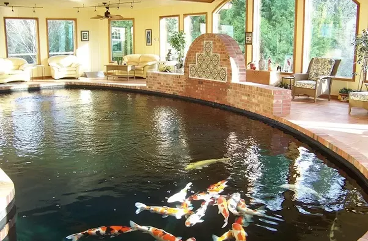 Hadirkan Kolam Ikan dalam Rumah