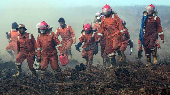 Koropak.co.id - Akibat Kebakaran Hutan, Indonesia Darurat Kabut Asap (1)