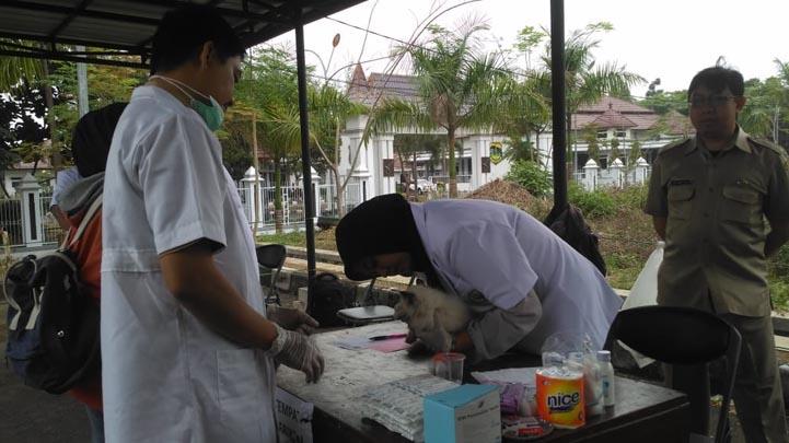 Koropak.co.id - Dinas Pertanian Kabupaten Tasikmalaya Gelar Suntik Rabies Gratis (2)