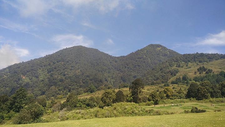 Pesona Padang Rumput di Punggung Gunung Papandayan