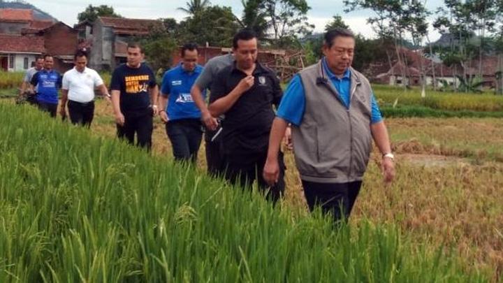 Koropak.co.id - SBY Jogging Pagi di Garut (2)